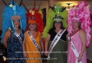 Homemade Pageant Contestant Costumes