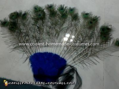 Coolest Peacock Costume - Front of tail