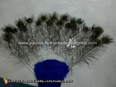 Coolest Peacock Costume - Back of tail