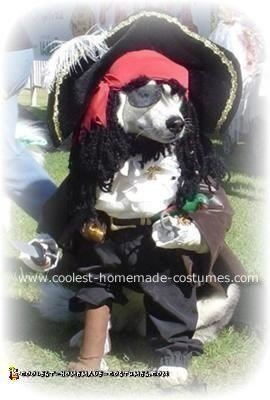 Captain Pasha the Pirate Costume
