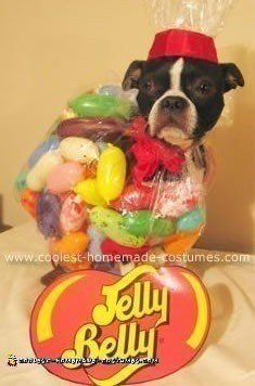 A bag of Jelly Belly Jelly Beans!