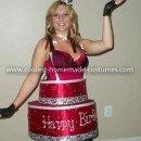 Coolest Red Velvet Birthday Cake Costume