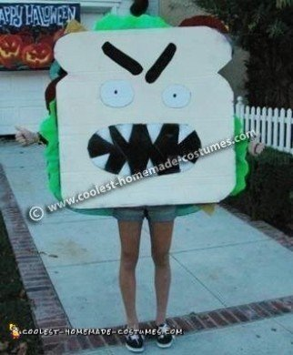 Sandwich DIY Halloween Costume