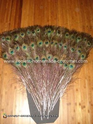 Homemade Sexy Peacock Showgirl Costume
