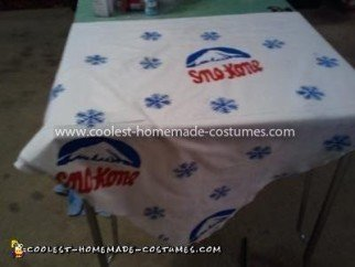 Homemade Sno Kone Costume