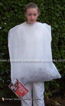 Homemade Tea Bag Costume