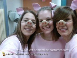 Homemade Three Little Pigs Costume