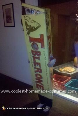 Coolest Toblerone Costume