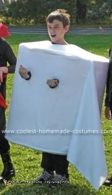 Homemade Toilet Paper Roll Costume