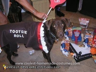 Homemade Tootsie Roll Pet Dog Costume