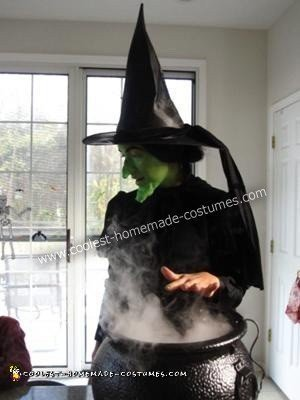 Wicked Witch DIY Halloween Costume