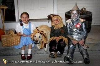 Homemade Wizard of Oz Costume