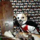 Coolest Dog Halloween Costumes - Photos and How-To Tips