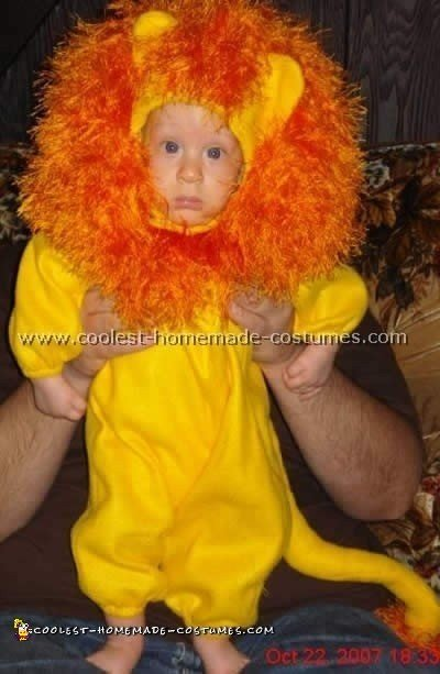 7 Coolest Homemade Lion Costume Ideas For Kids