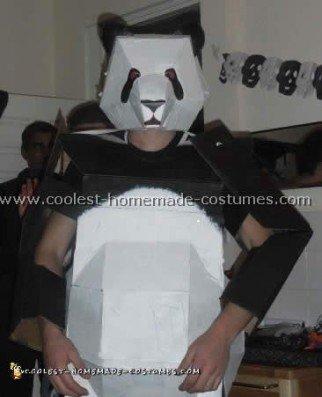 Coolest Homemade Panda Costume Ideas