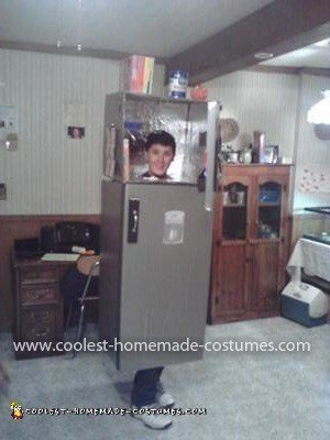 Homemade Sensational Stainless Steel Refrigerator Costume