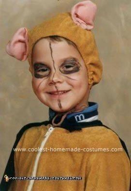 Homemade Boy Lion Costume