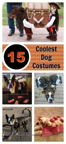 dog-halloween-costume-ideas-collage