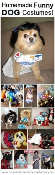 funny-dog-costumes