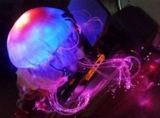jellyfishcostume1