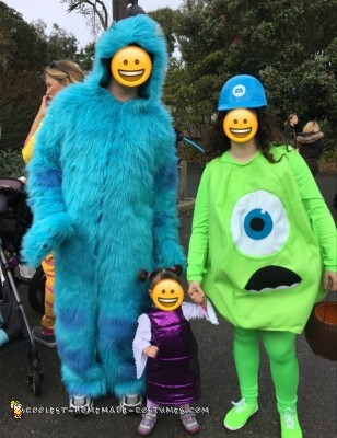cool homemade monsters inc family costumes