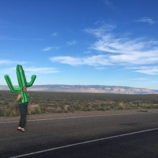 homemade cactus costume