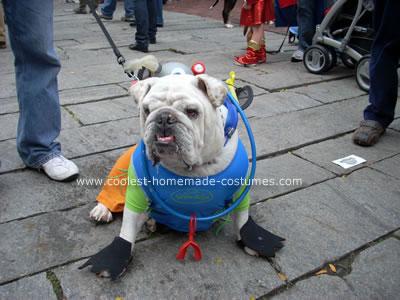 Scuba Bulldog Costume