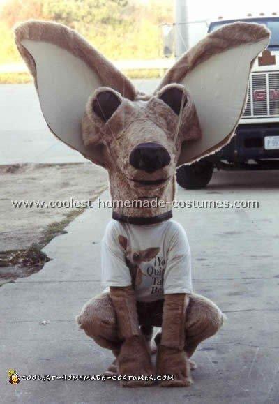 Homemade Taco Bell Dog Halloween Costume
